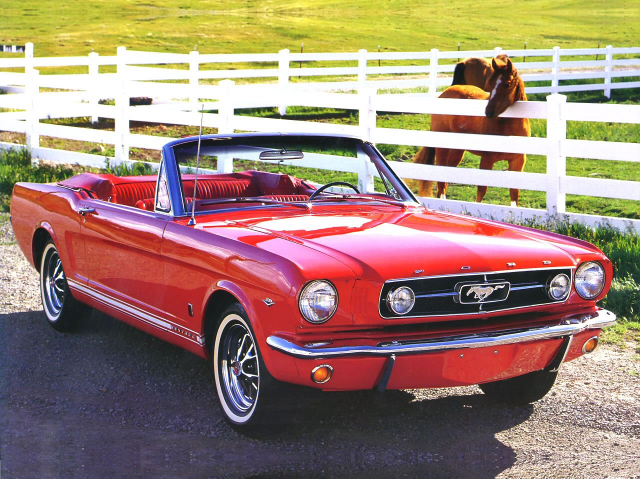 Nice wallpapers 1965 Ford Mustang 1280x958px