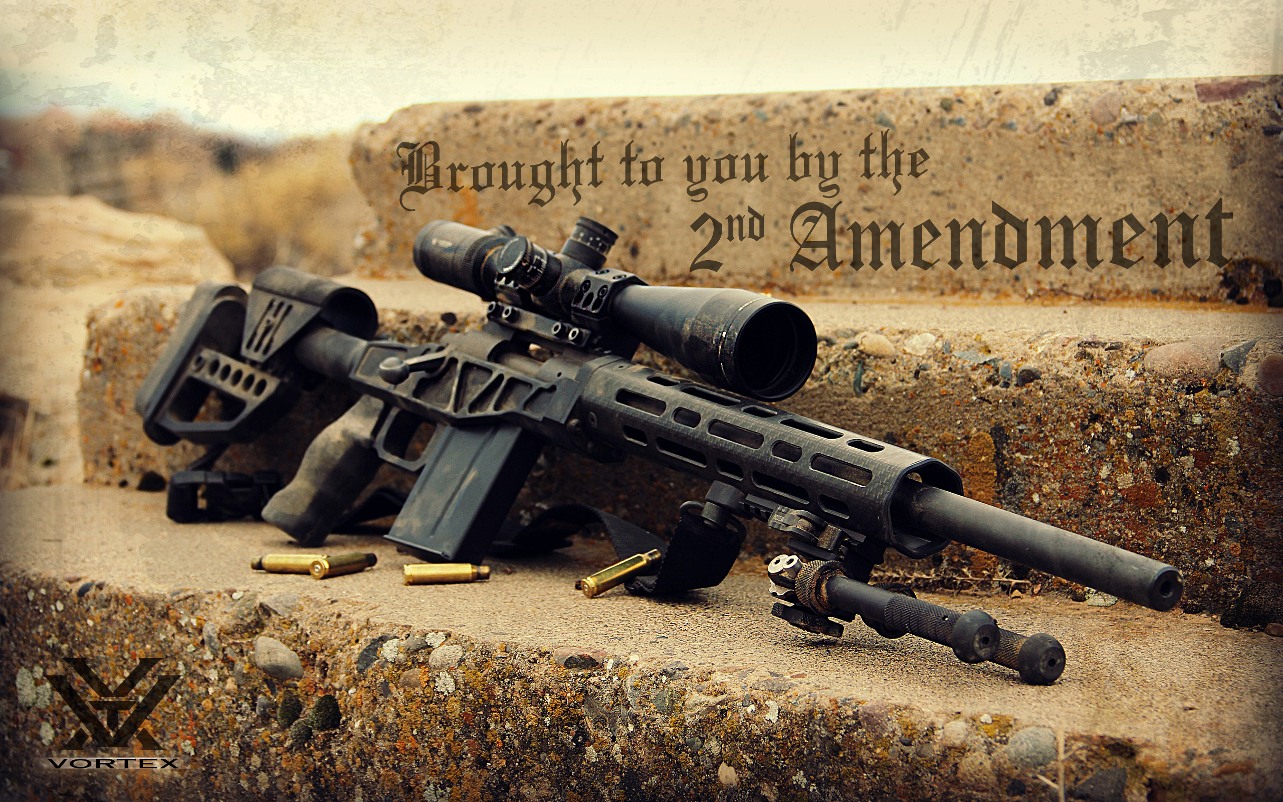 HD Quality Wallpaper | Collection: Misc, 2560x1600 2nd Amendment