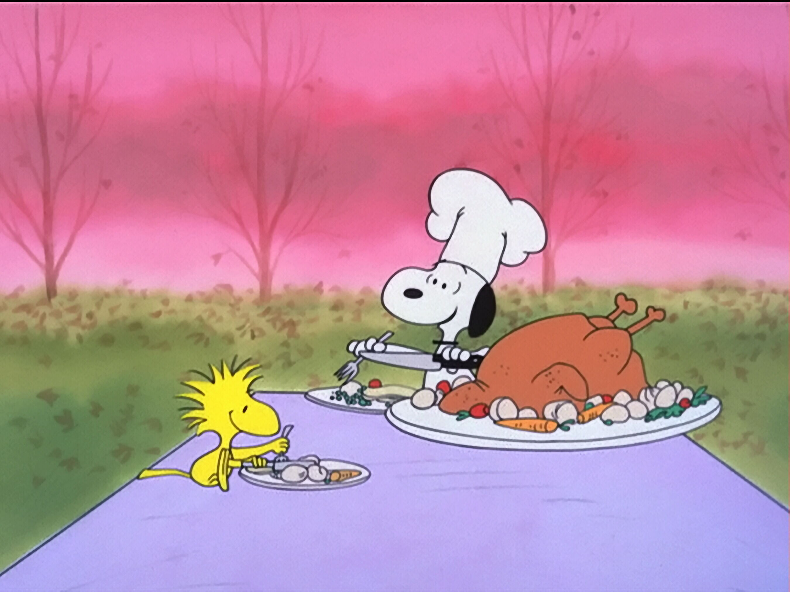 A Charlie Brown Thanksgiving Pics, Cartoon Collection