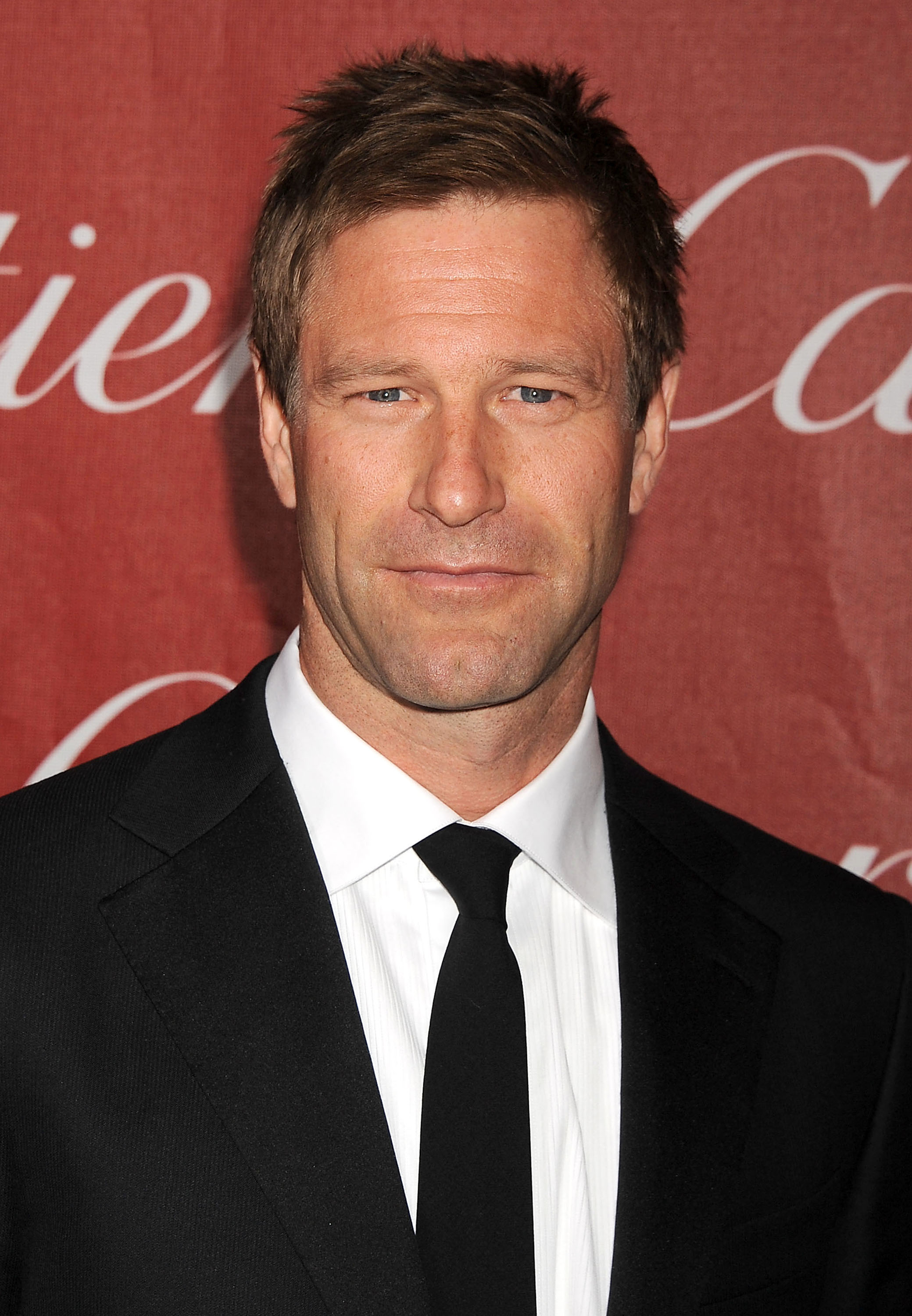 Nice Images Collection: Aaron Eckhart Desktop Wallpapers