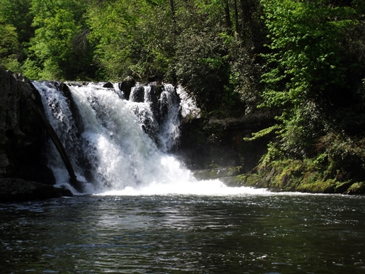 Nice Images Collection: Abrams Falls Desktop Wallpapers