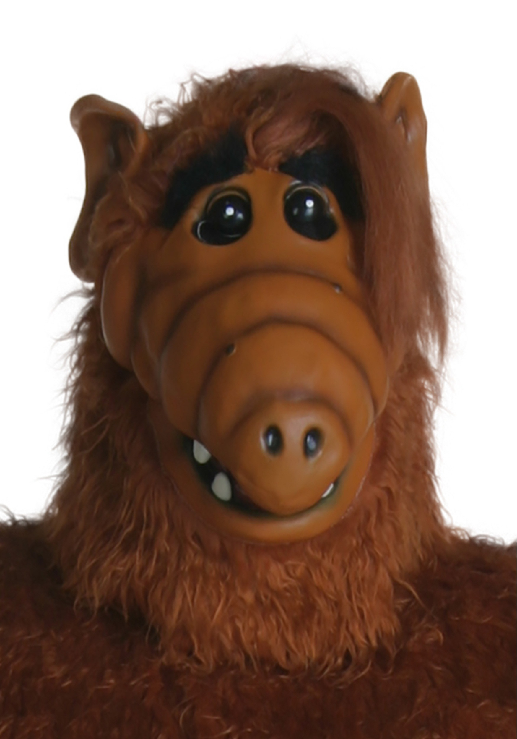 Images of Alf | 1750x2500