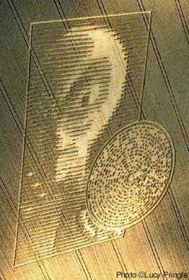 High Resolution Wallpaper | Alien Circles 270x400 px