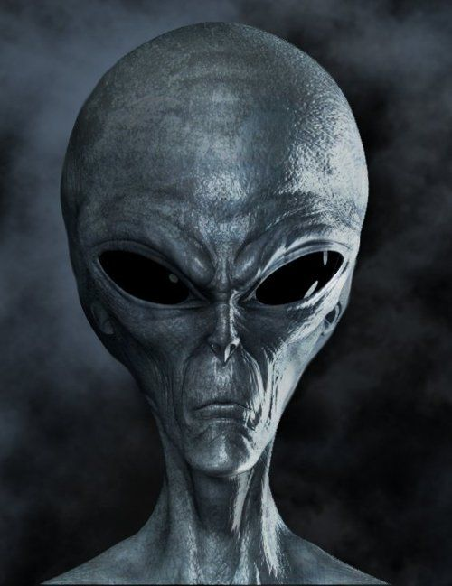 HD Quality Wallpaper | Collection: Movie, 500x649 Alien