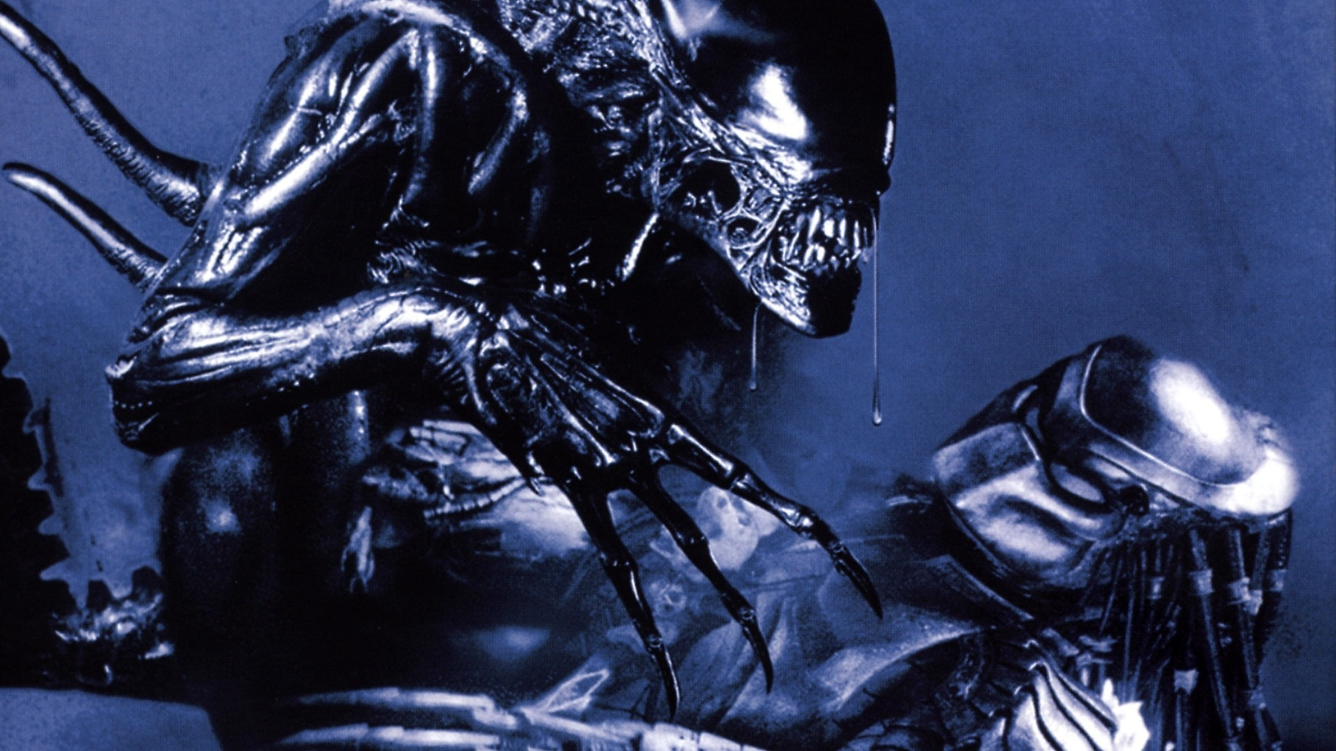 Alien Vs. Predator #4