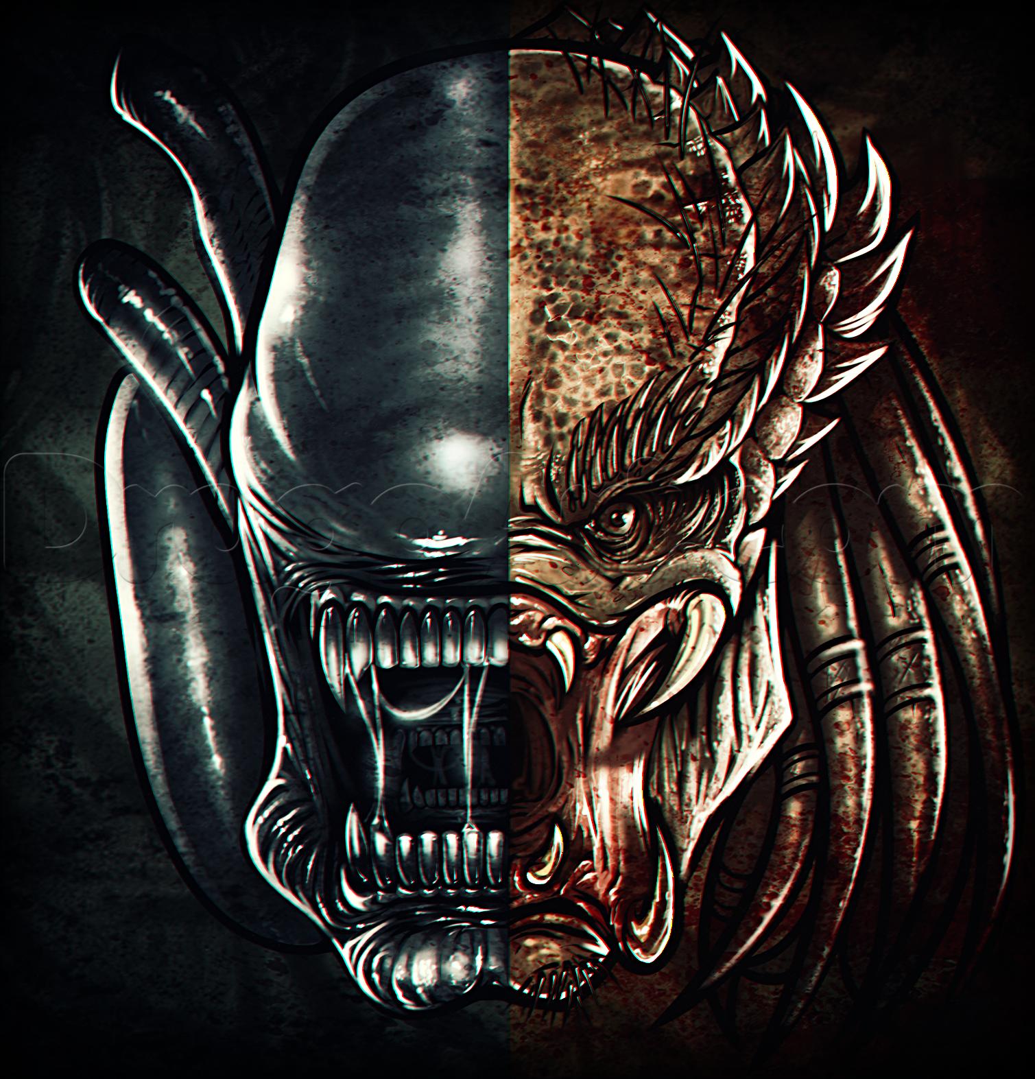 Nice wallpapers Alien Vs. Predator 1509x1573px