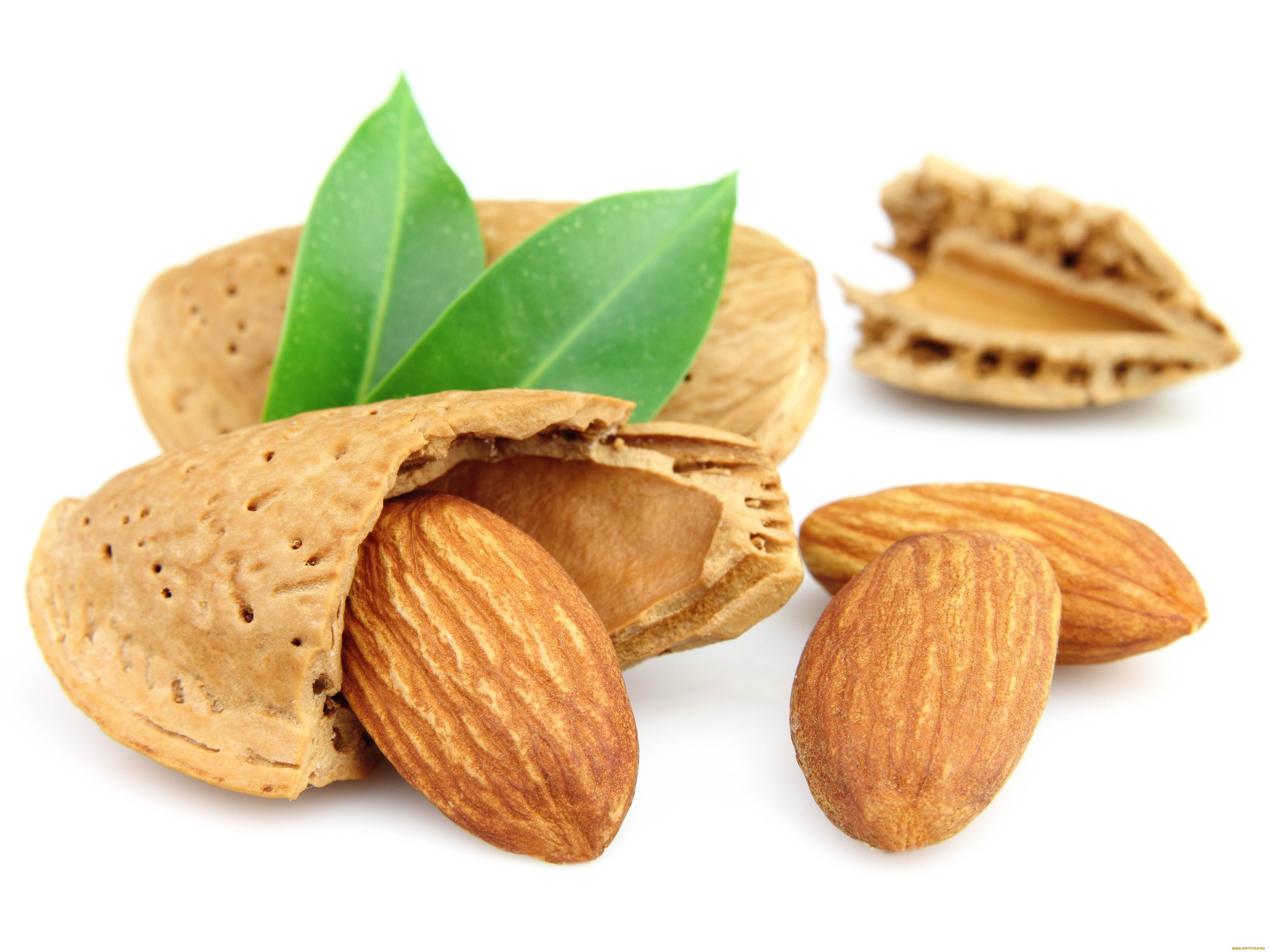 5000x3750 > Almond Wallpapers