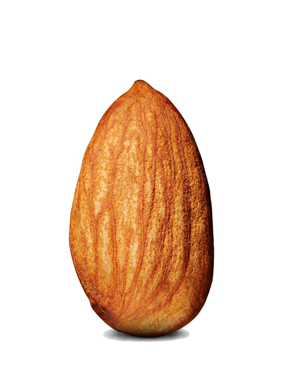 Almond Backgrounds, Compatible - PC, Mobile, Gadgets  1000x1266 px