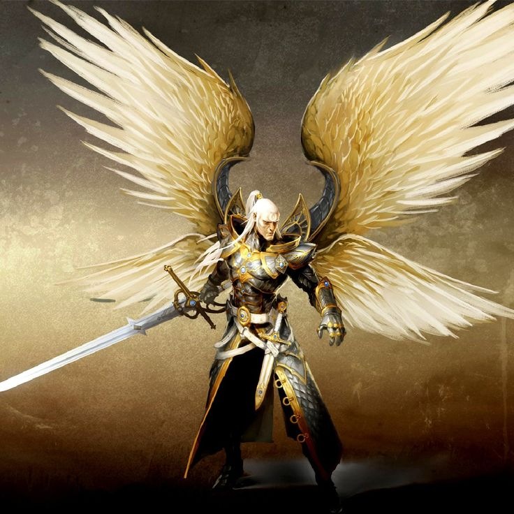 Images of Angel Warrior | 736x736
