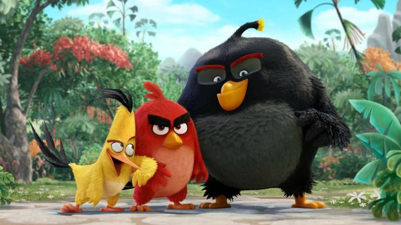 Angry Birds Backgrounds, Compatible - PC, Mobile, Gadgets| 800x450 px
