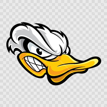 Amazing Angry Duck Pictures & Backgrounds