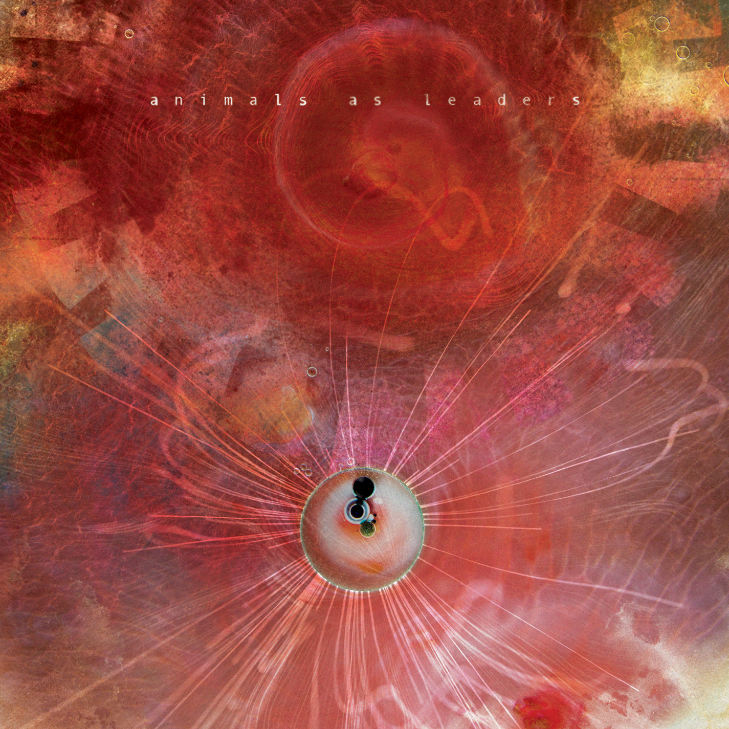 High Resolution Wallpaper   Animals As Leaders 1425x1425 px