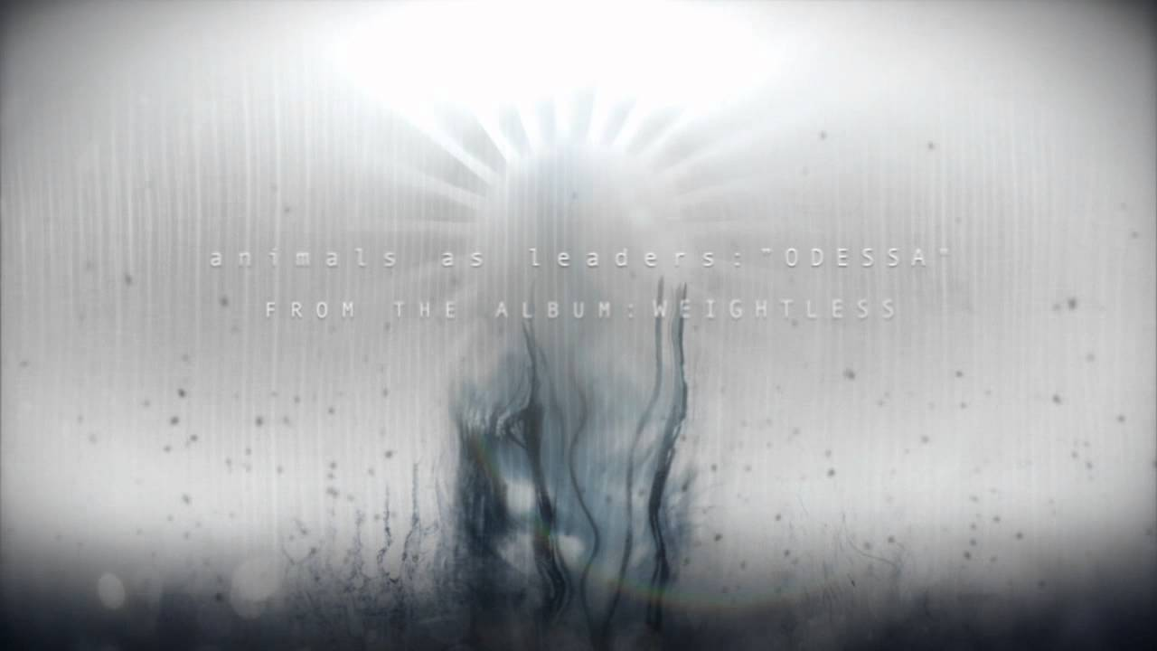 HQ Animals As Leaders Wallpapers   File 38.19Kb