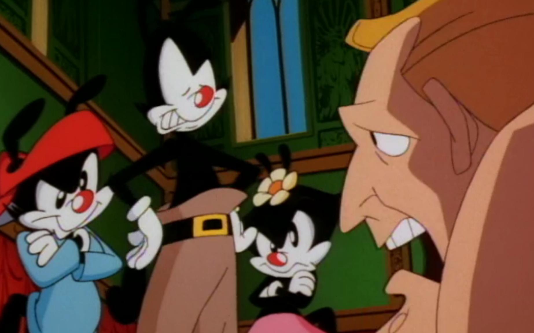 Animaniacs Pics, Cartoon Collection