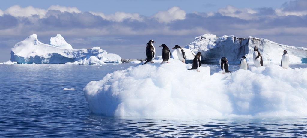 Antarctica HD wallpapers, Desktop wallpaper - most viewed