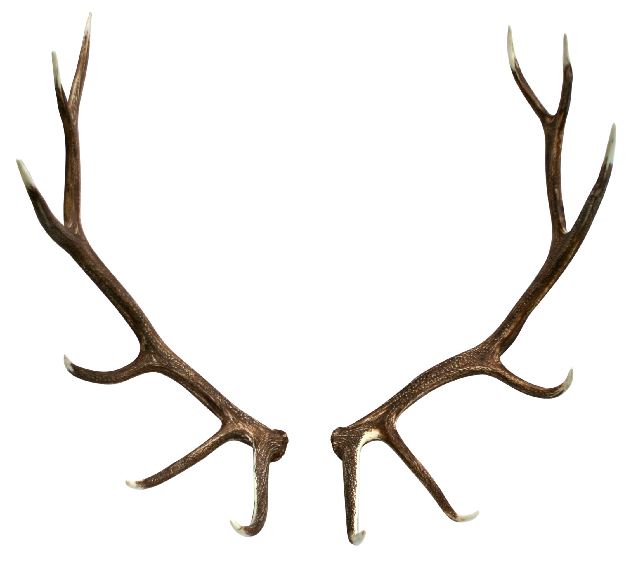 Nice wallpapers Antler 2160x1950px