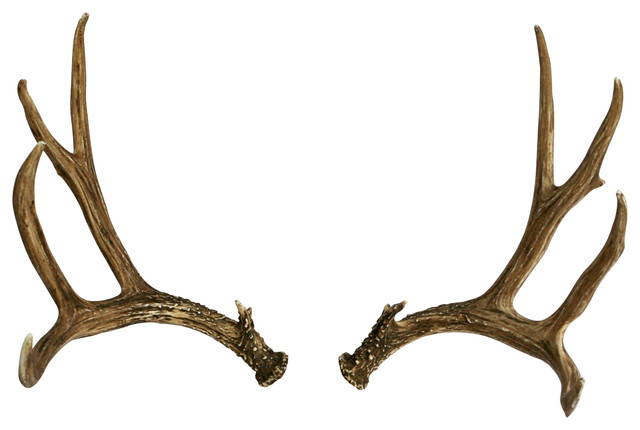 Antler Backgrounds, Compatible - PC, Mobile, Gadgets| 640x430 px