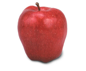 Apple Pics, CGI Collection