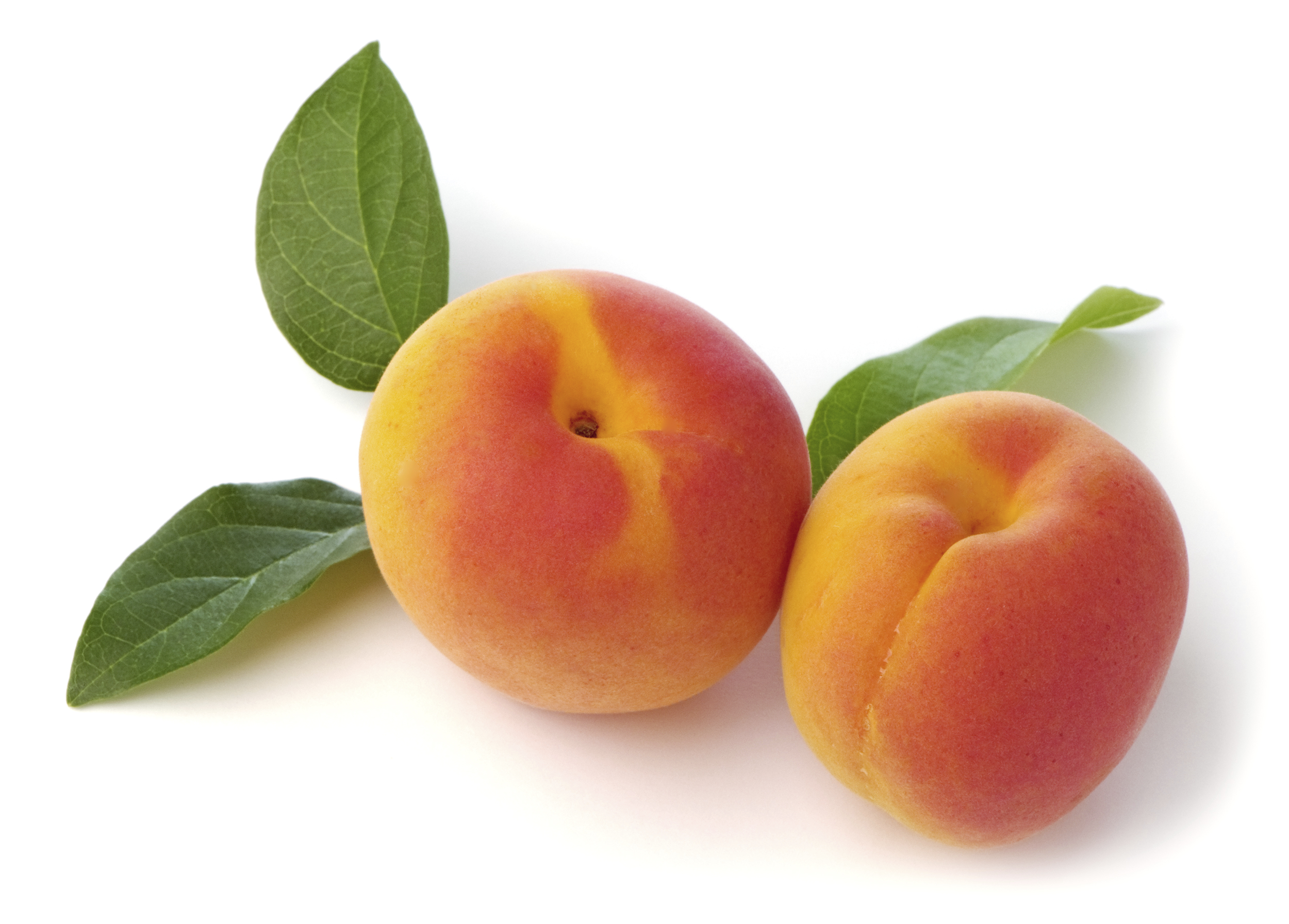HD Quality Wallpaper | Collection: Food, 2500x1793 Apricot