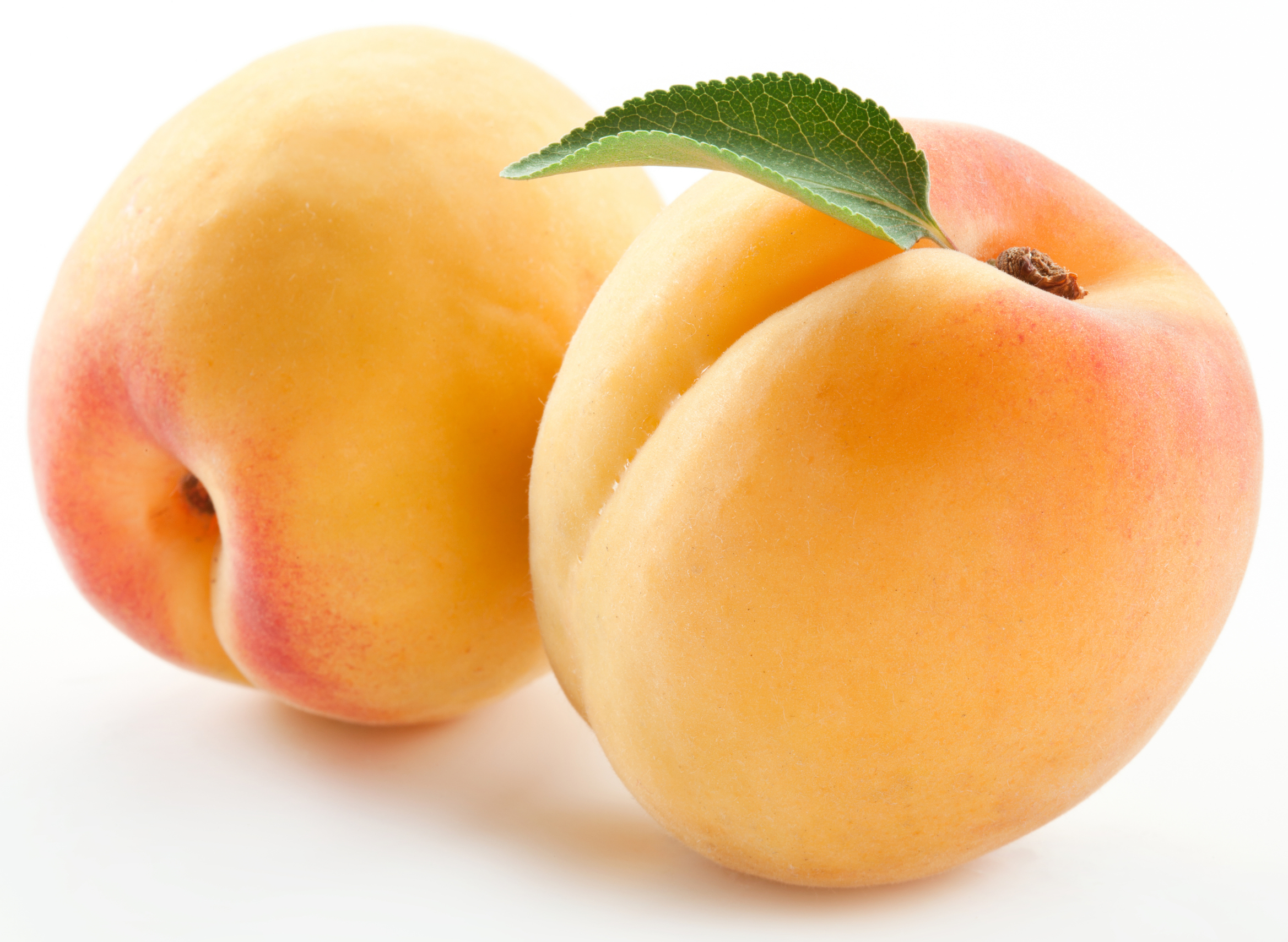 2338x1711 > Apricot Wallpapers
