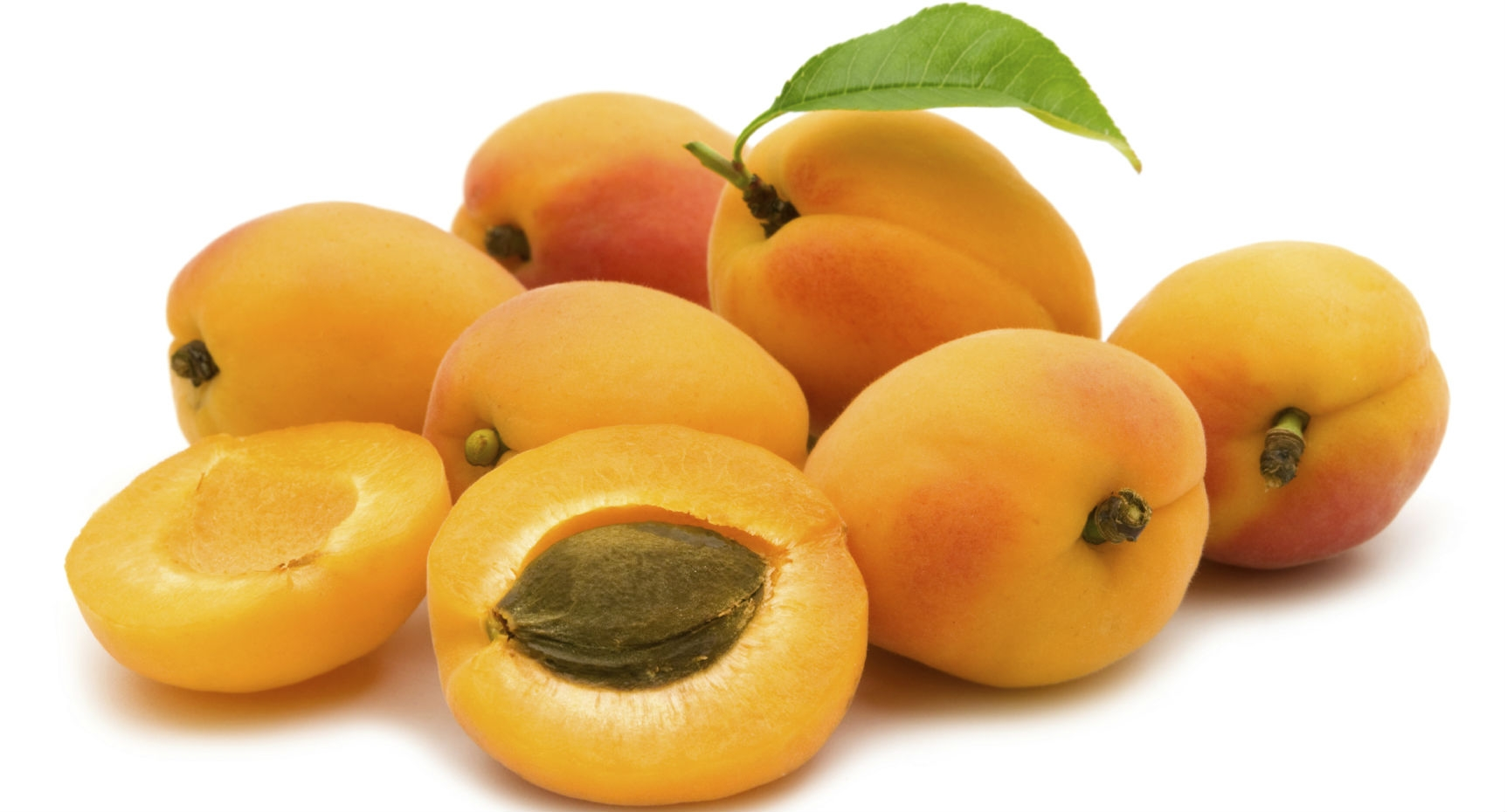 Amazing Apricot Pictures & Backgrounds