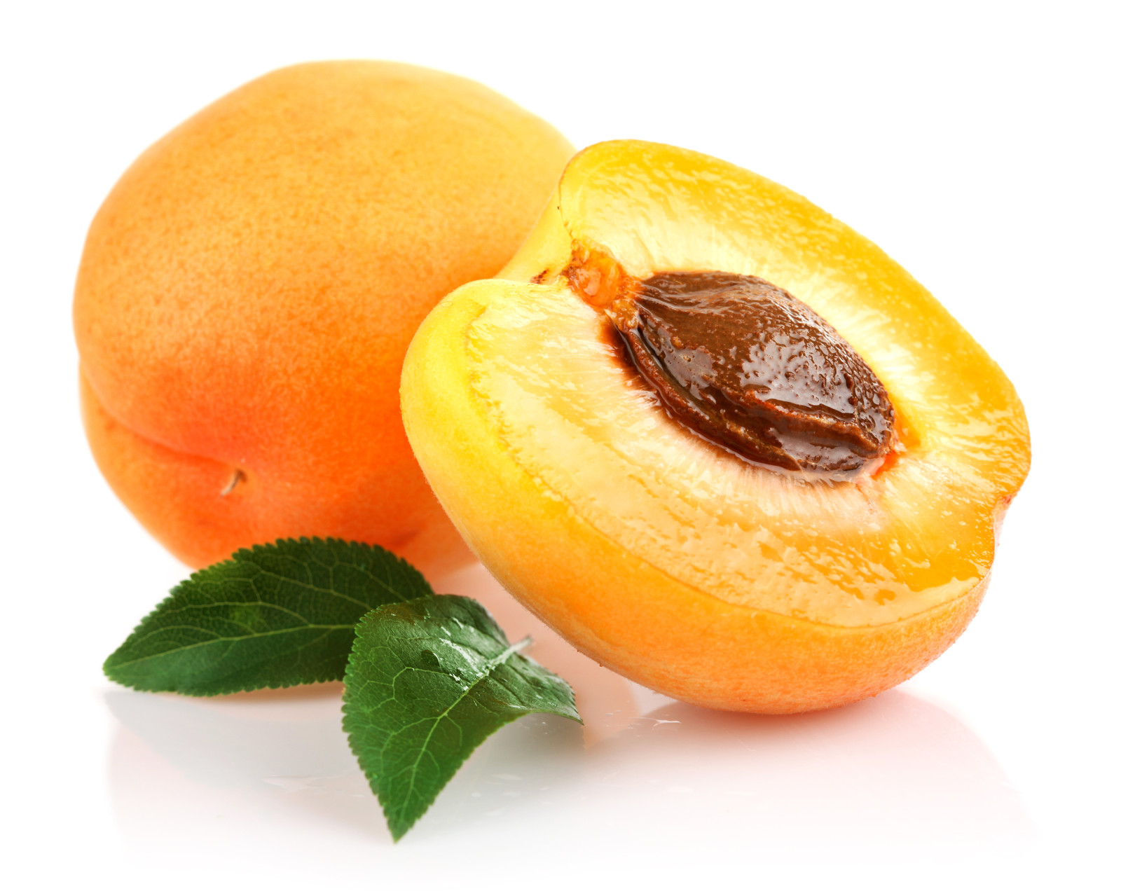 Images of Apricot | 1600x1272
