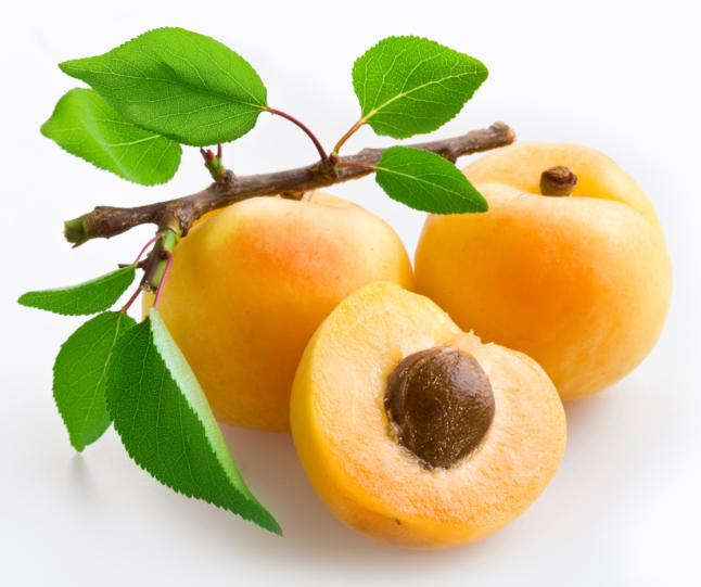 Images of Apricot | 646x541