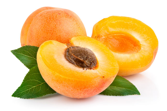 Apricot Backgrounds on Wallpapers Vista