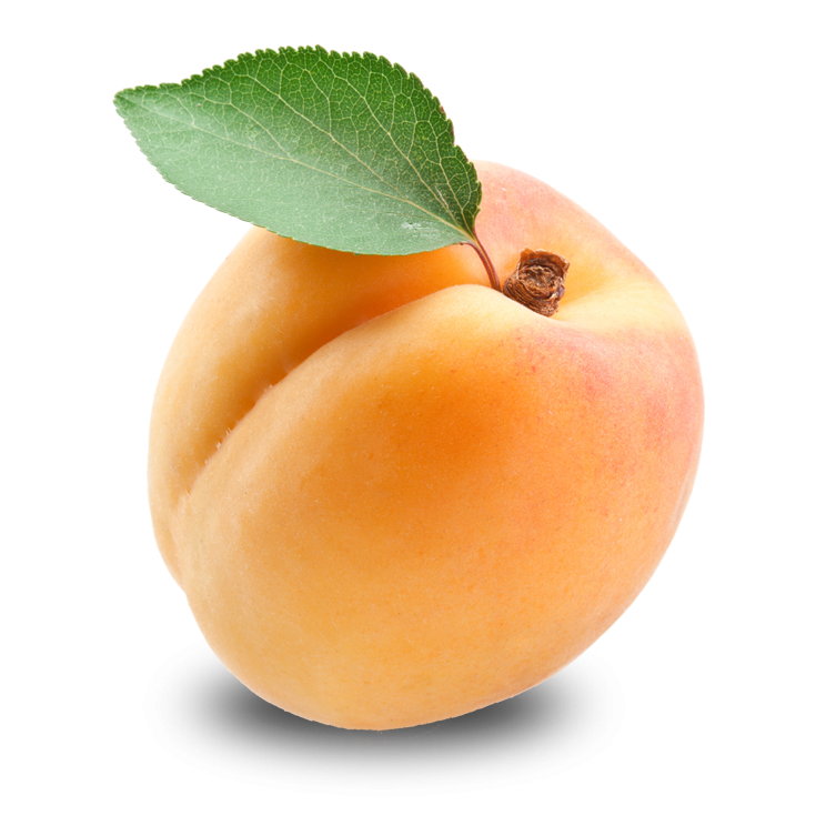 Apricot High Quality Background on Wallpapers Vista