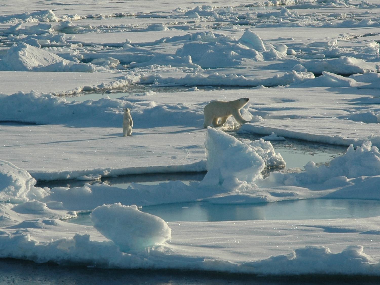 Arctic Alaska High Quality Background on Wallpapers Vista