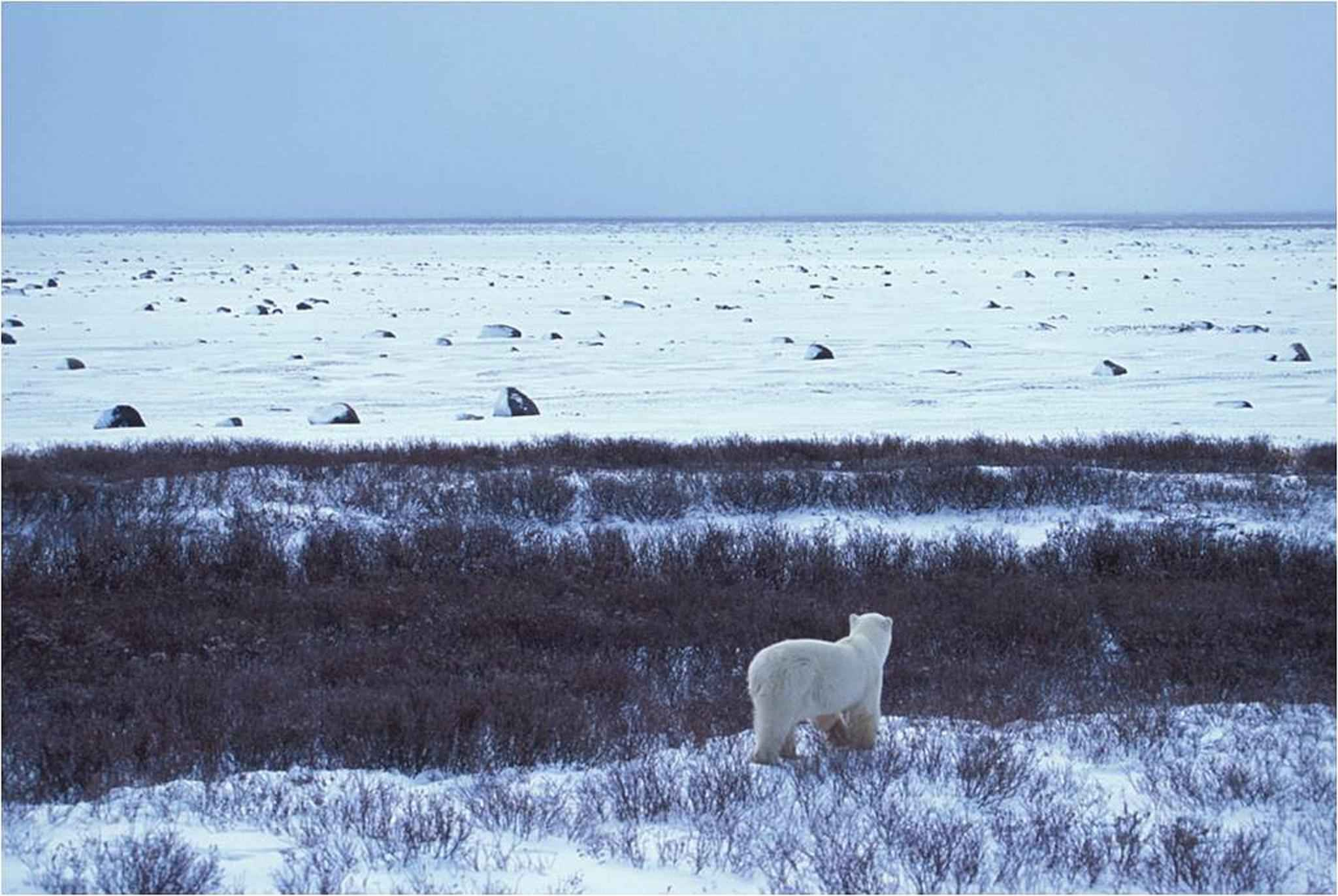 High Resolution Wallpaper | Arctic Alaska 2048x1372 px
