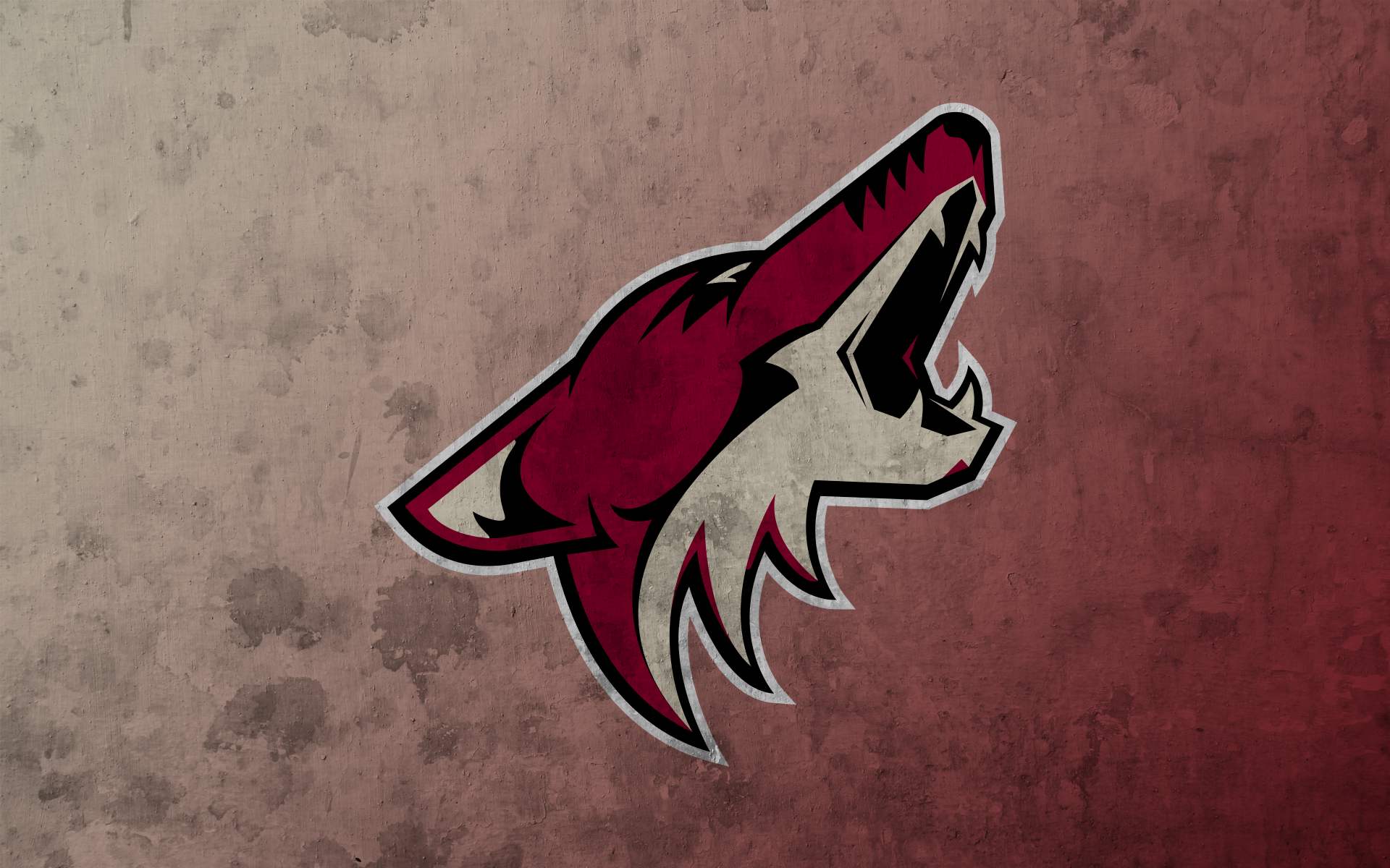 Arizona Coyotes #10