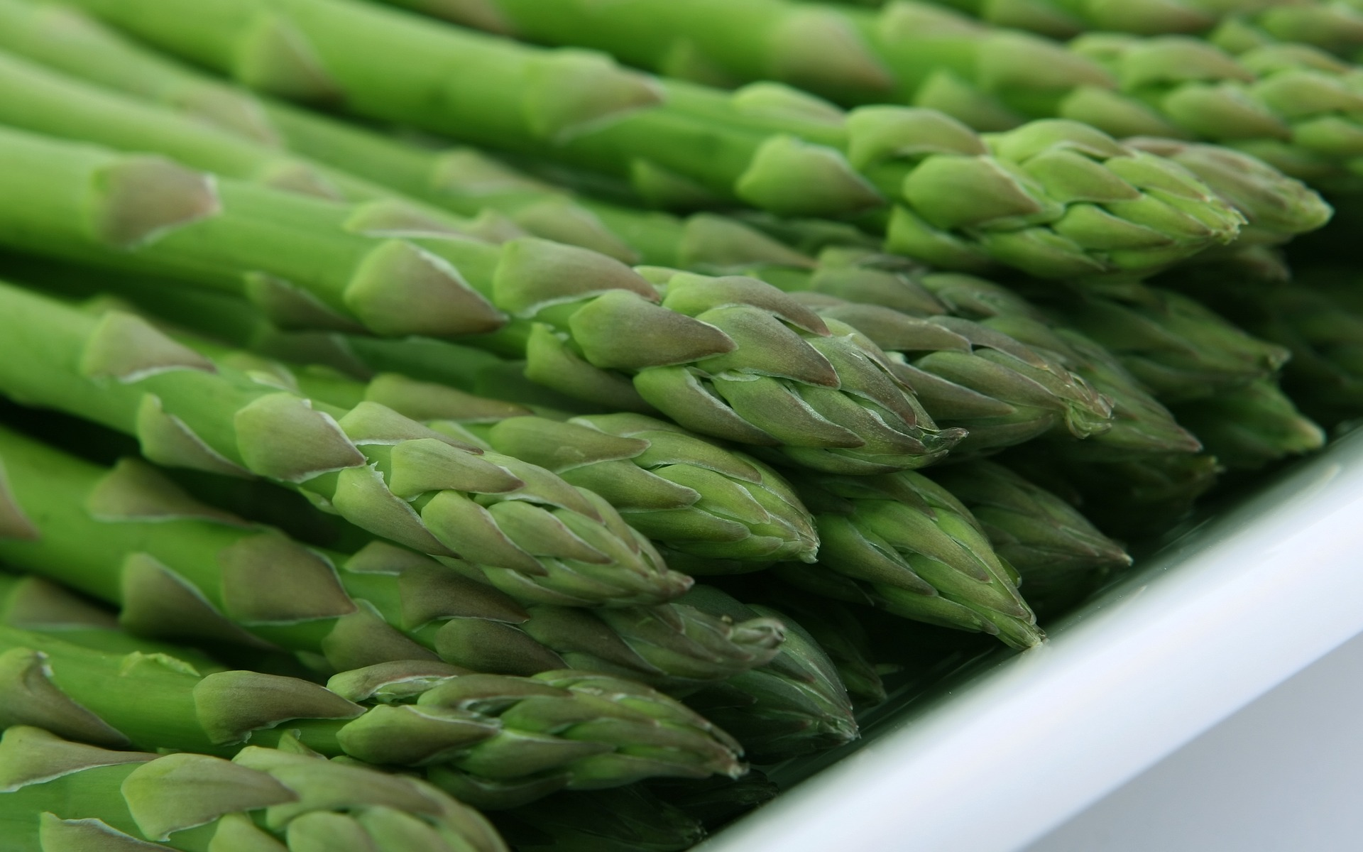 Nice Images Collection: Asparagus Desktop Wallpapers