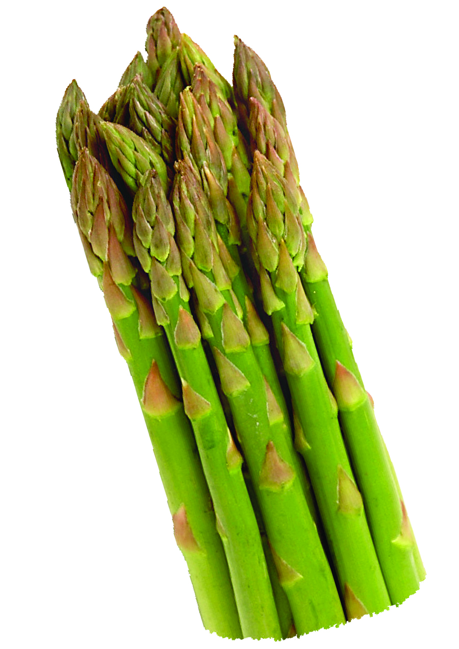 HQ Asparagus Wallpapers | File 1363.58Kb