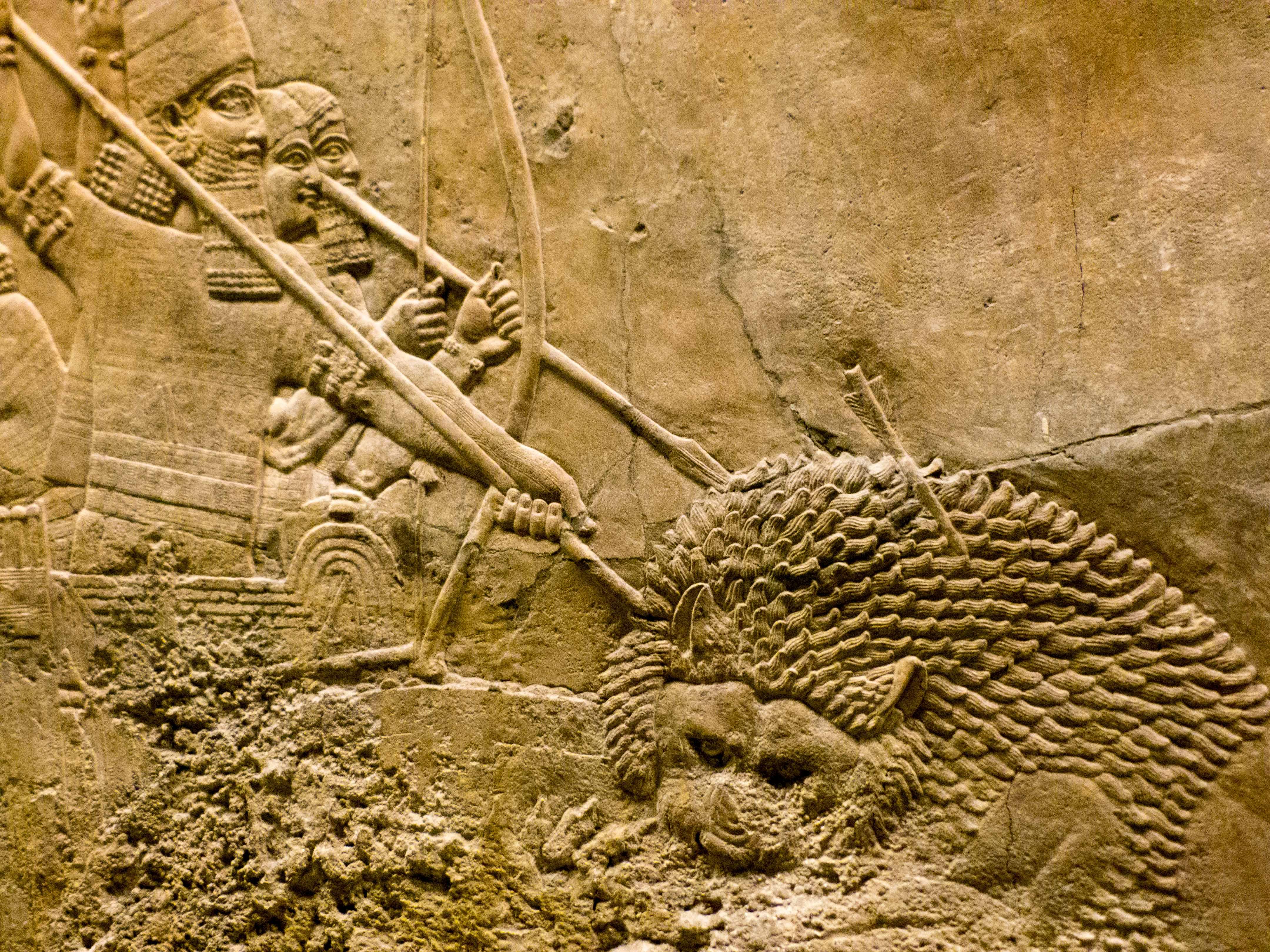 Assyria: Lion Hunts Backgrounds, Compatible - PC, Mobile, Gadgets| 4320x3240 px