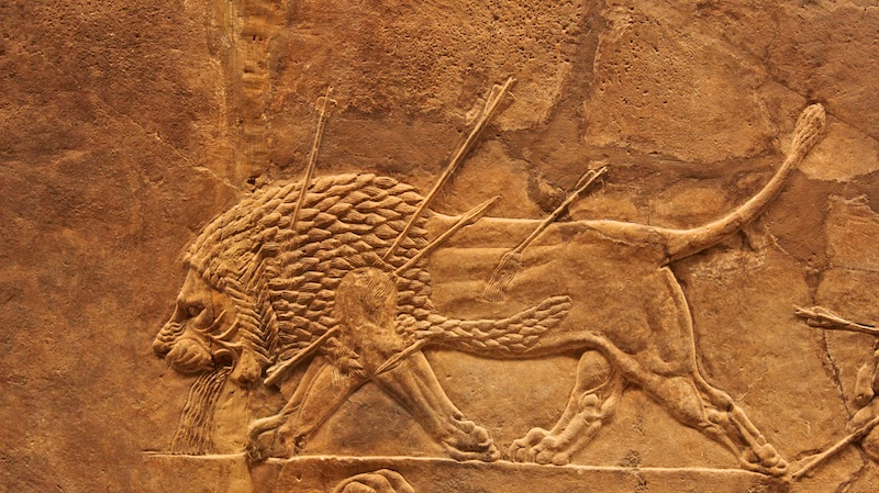 Assyria: Lion Hunts Pics, Artistic Collection