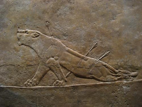 Images of Assyria: Lion Hunts | 500x375