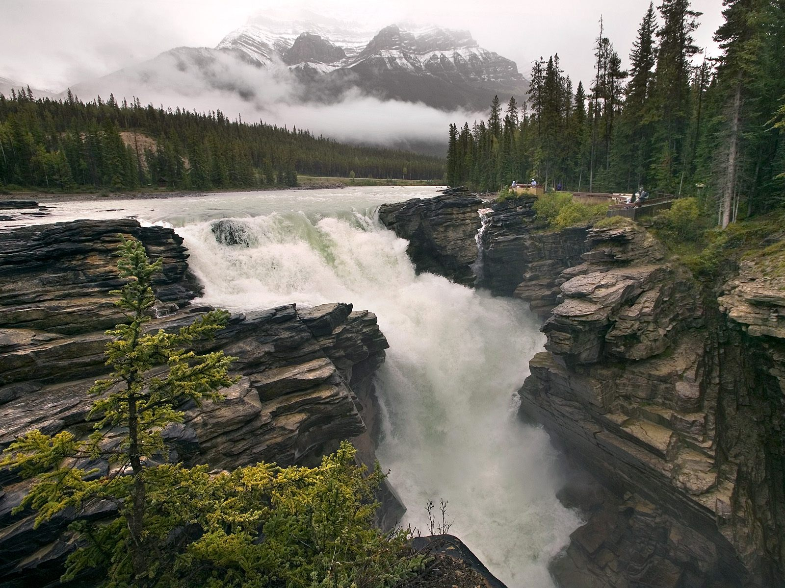 Images of Athabasca Falls   1600x1200
