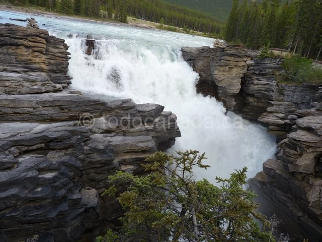 Images of Athabasca Falls   640x480