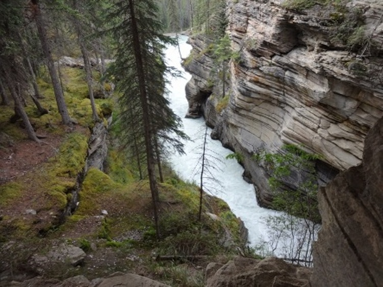 Nice wallpapers Athabasca Falls 751x563px