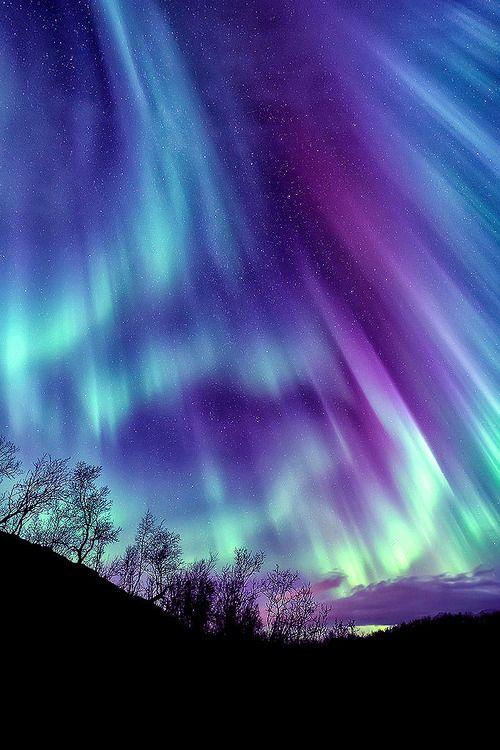 High Resolution Wallpaper   Aurora Borealis 500x750 px