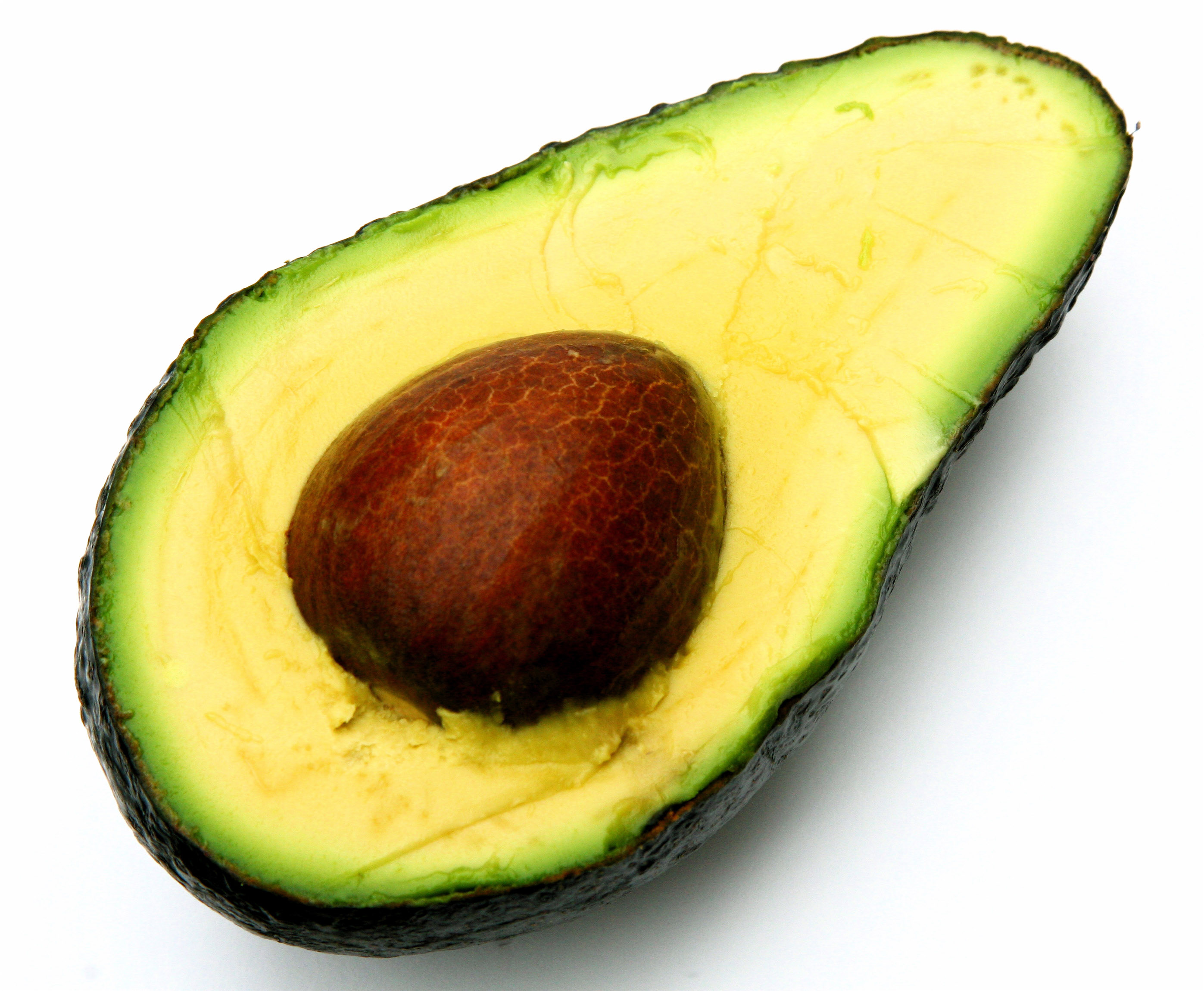 Images of Avocado | 2794x2300