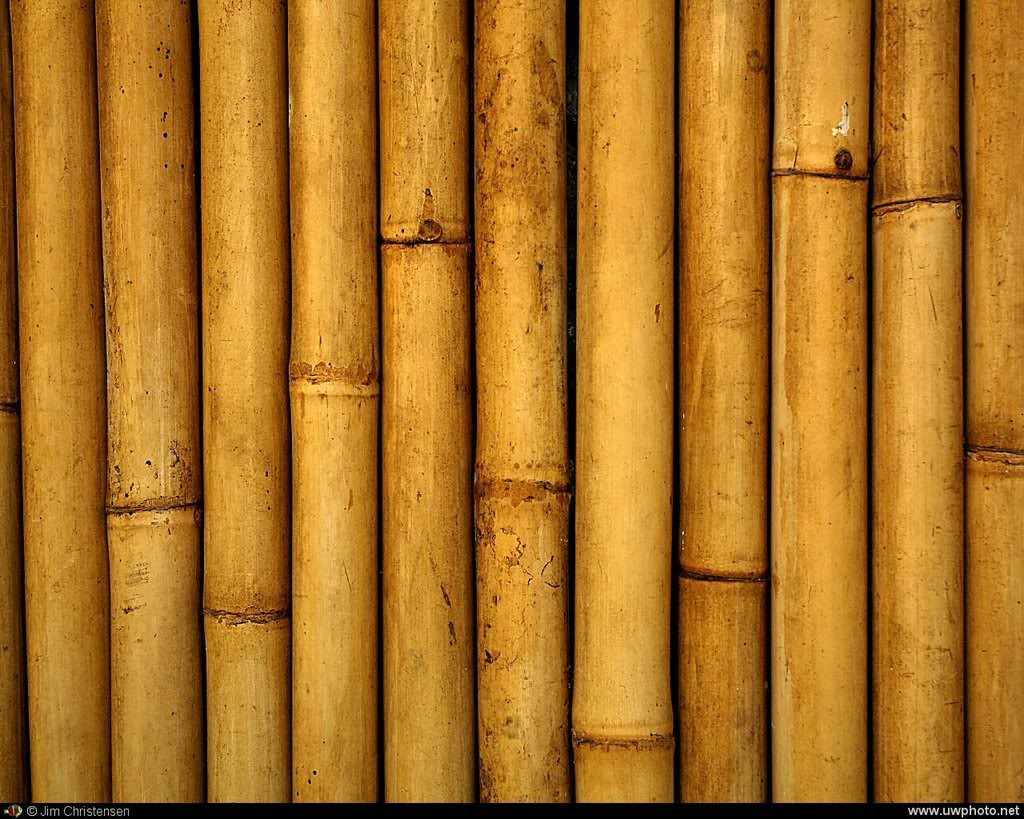 Bamboo Backgrounds, Compatible - PC, Mobile, Gadgets| 1024x819 px