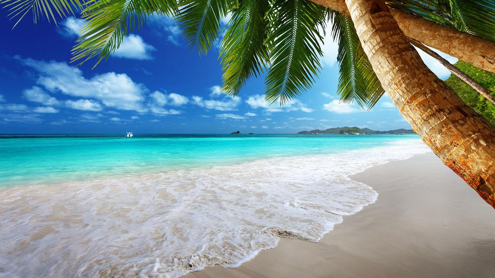 Beach Backgrounds on Wallpapers Vista