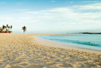 Nice wallpapers Beach 350x236px