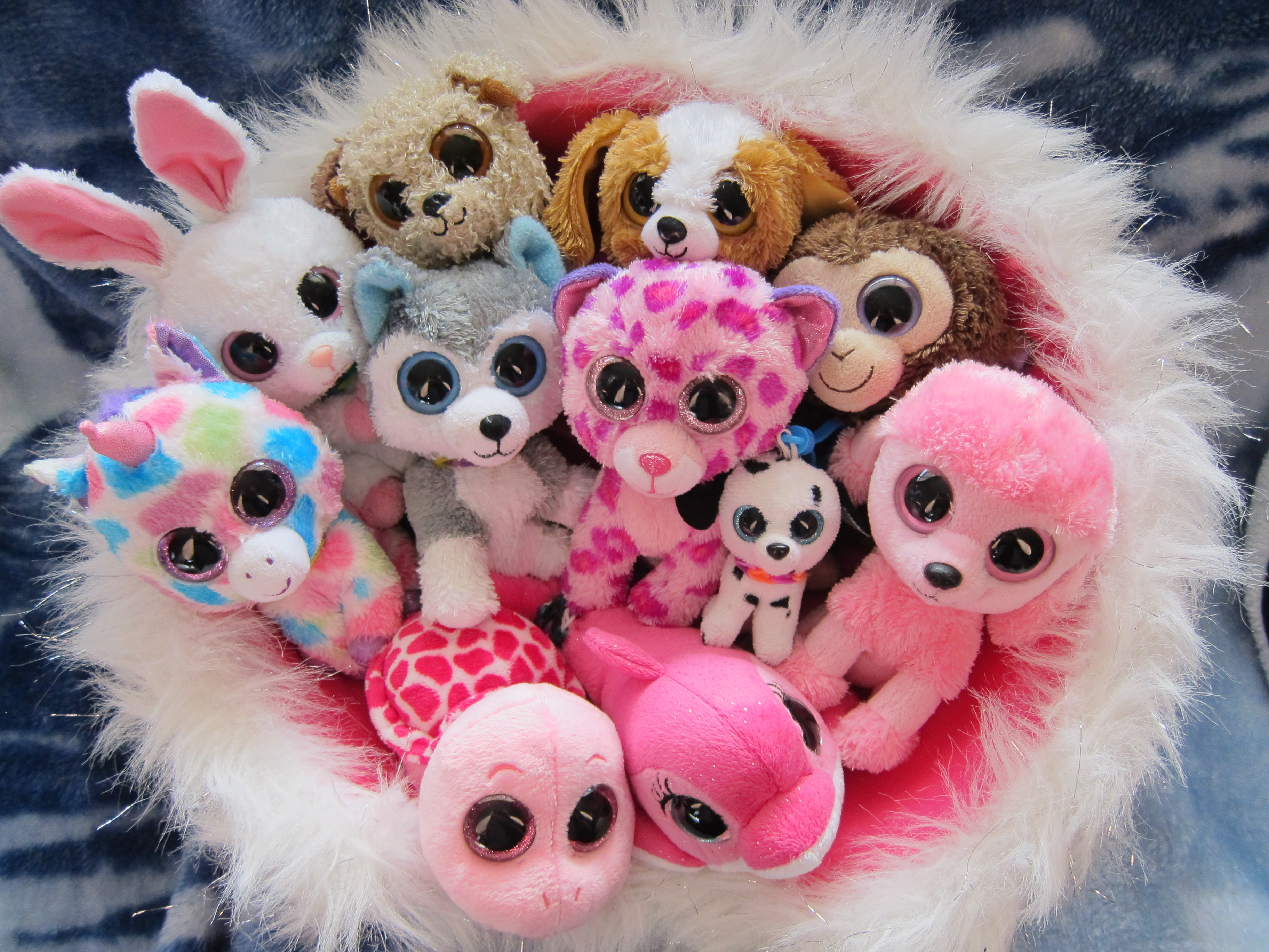 HD Quality Wallpaper | Collection: Products, 3648x2736 Beanie Boos
