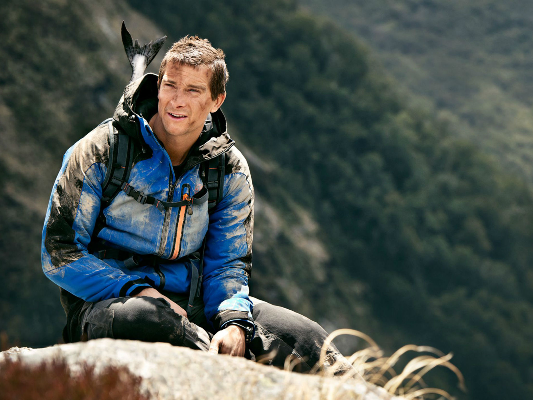 Nice wallpapers Bear Grylls 2048x1536px
