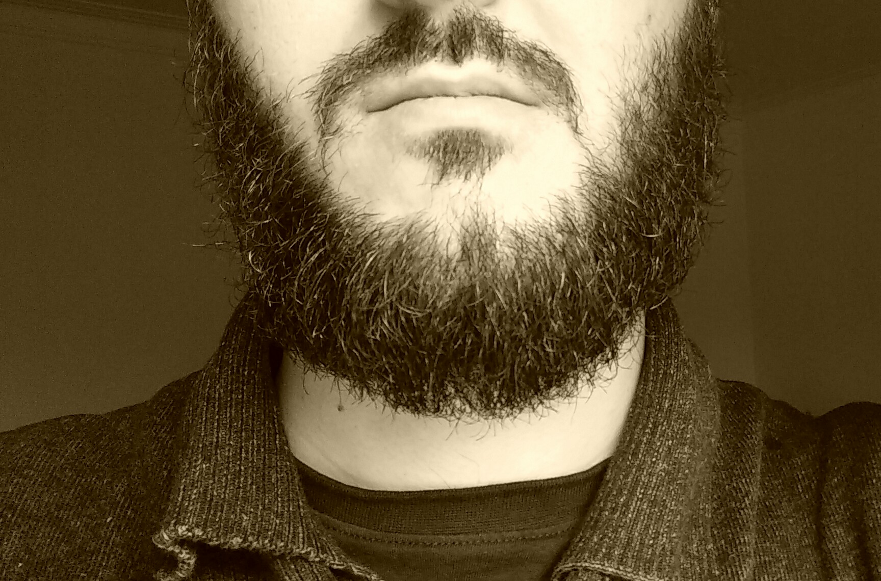 Beard Backgrounds on Wallpapers Vista