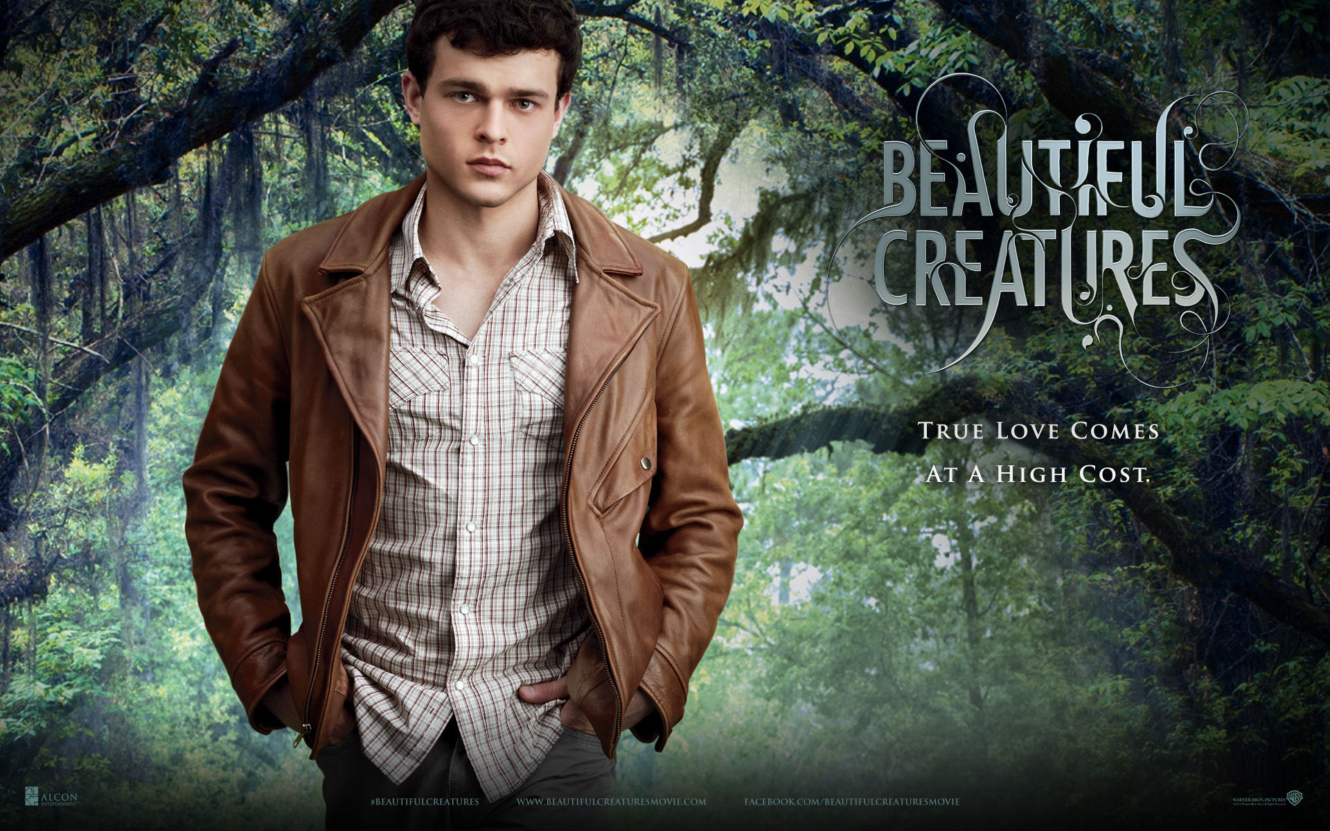 Nice wallpapers Beautiful Creatures 1920x1200px