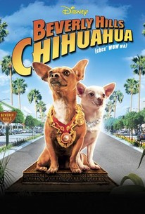 Beverly Hills Chihuahua Pics, Movie Collection